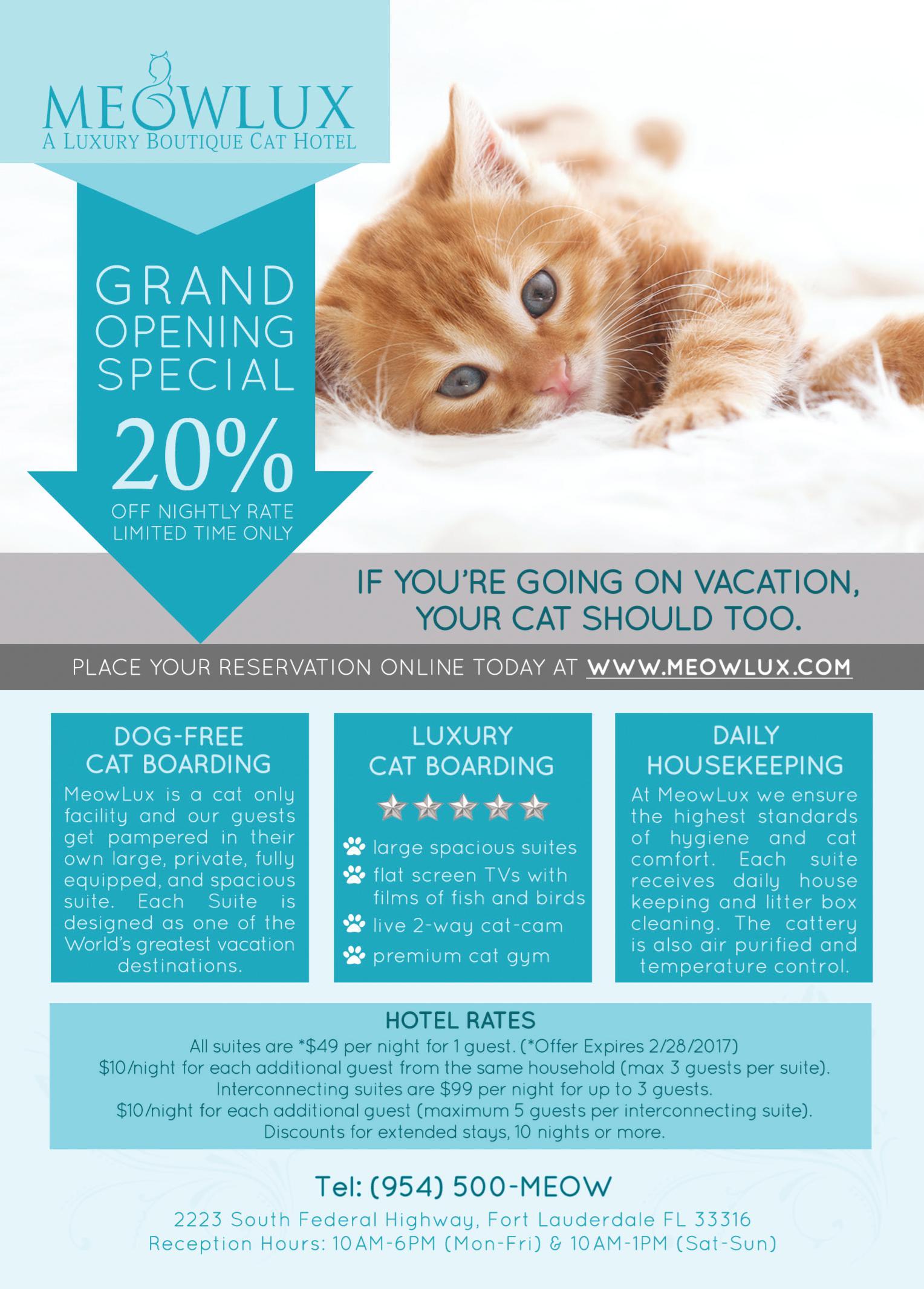 MeowLux Cat Hotel Grand Opening